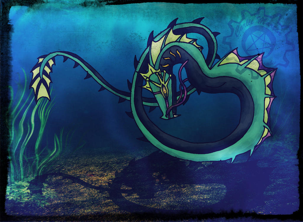 unagi sea serpent pro ...