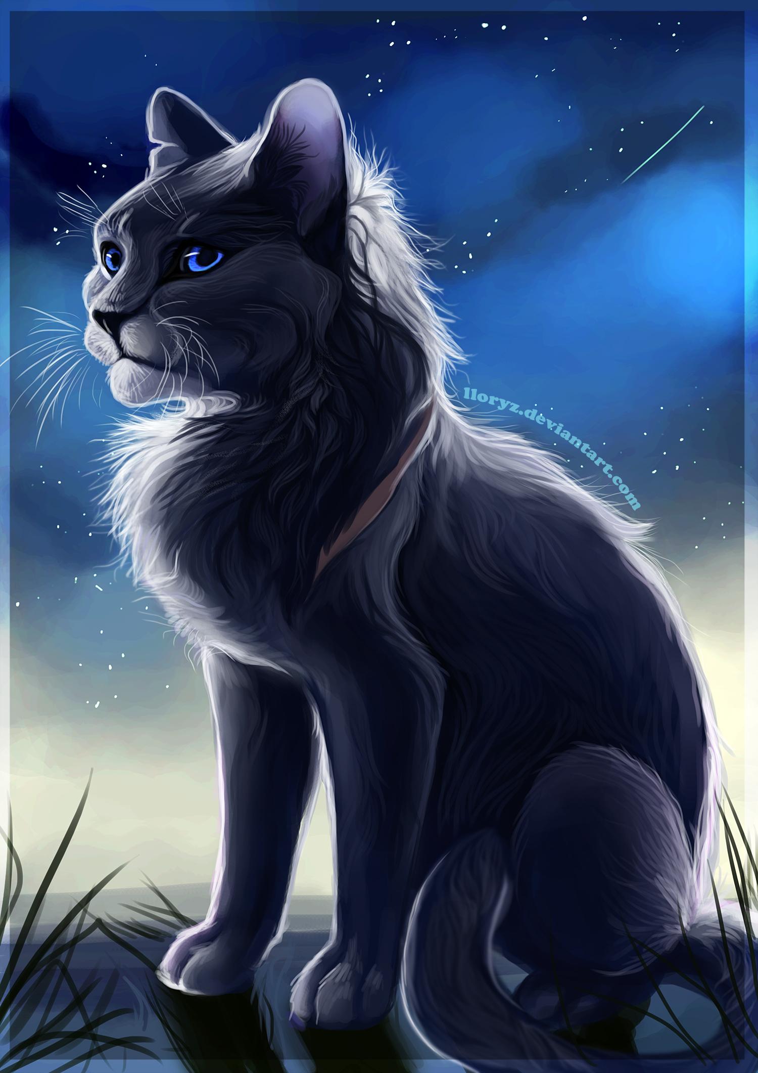 Bluestar by LLoryZ on DeviantArt Warrior Cat Drawings Bluestar