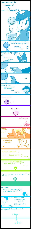 Flowers by kurisquare
