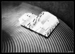 Music Equals Love by lilyamidthorns26