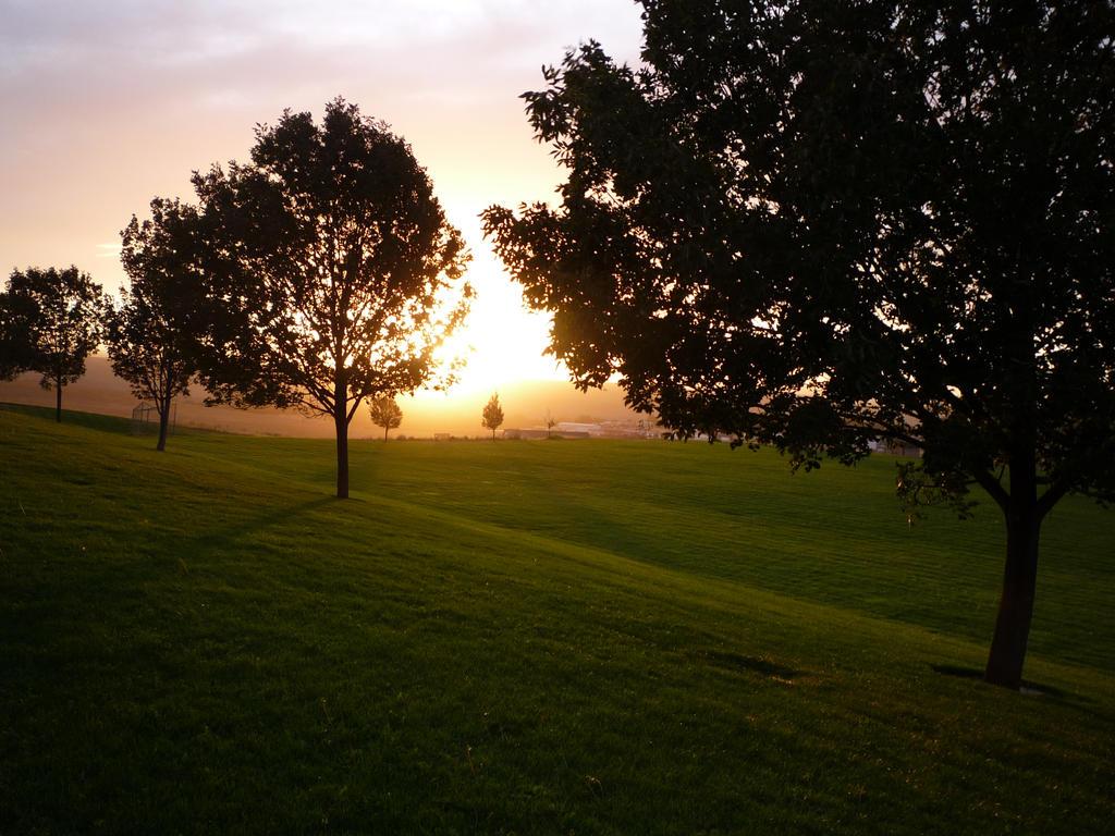 Park Sunset by Kimicat1