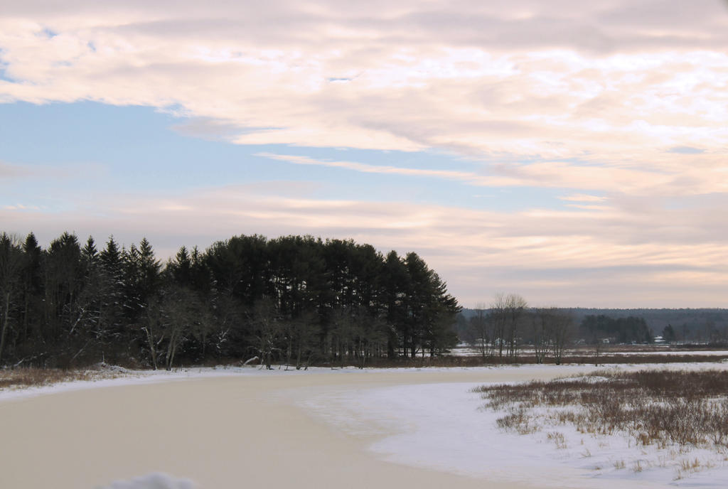 Winter Beauty by Kimicat1