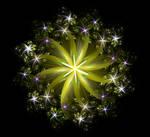 December Flower III