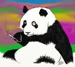 Fuzzy Panda High...