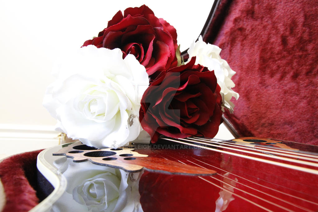 Musical Rose by kyrieleigh