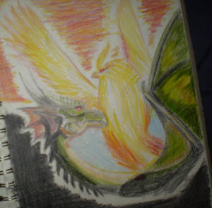 Dragon and Pheonix