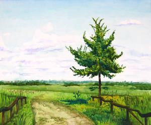 A lonely pear tree
