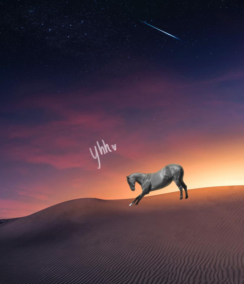 YHH:: OPEN - Desert