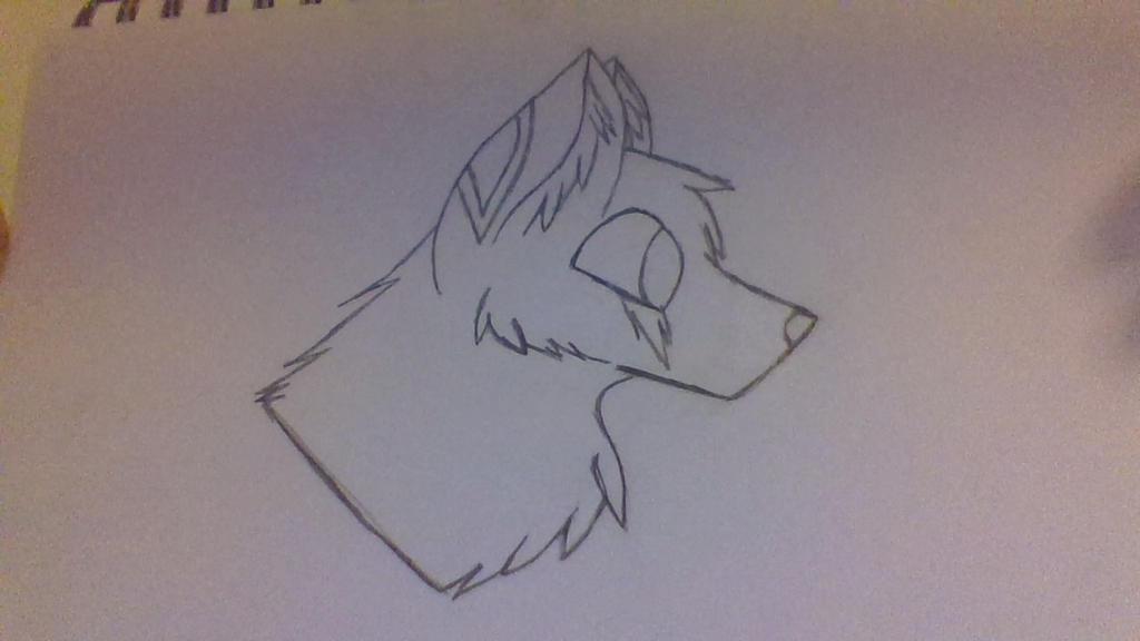 my wolf/kangaroo hybrid by FlameBerryTheWolf