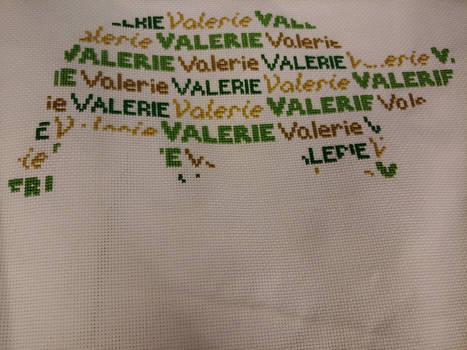 Valerie tortoise part 3