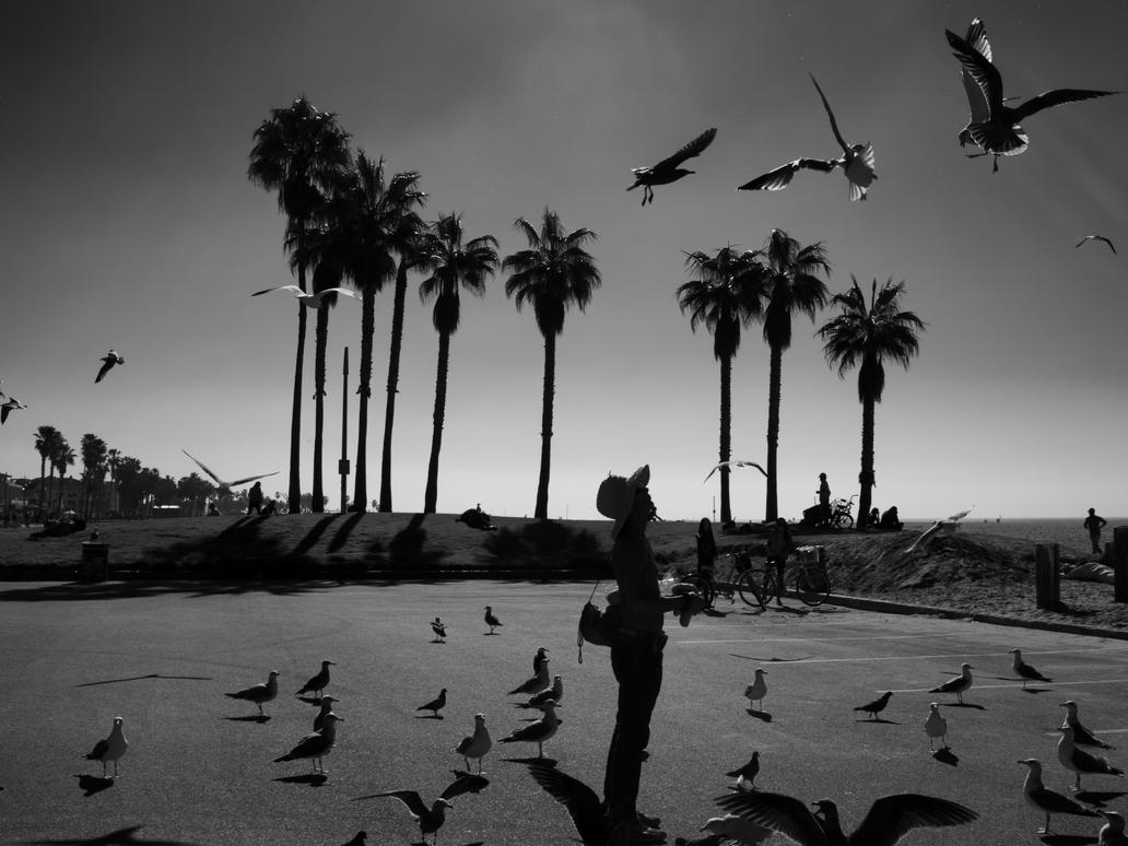 Bird Man by PatrickMonnier