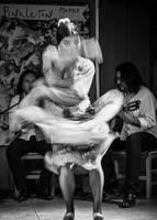 The Flamenco Dancer by PatrickMonnier