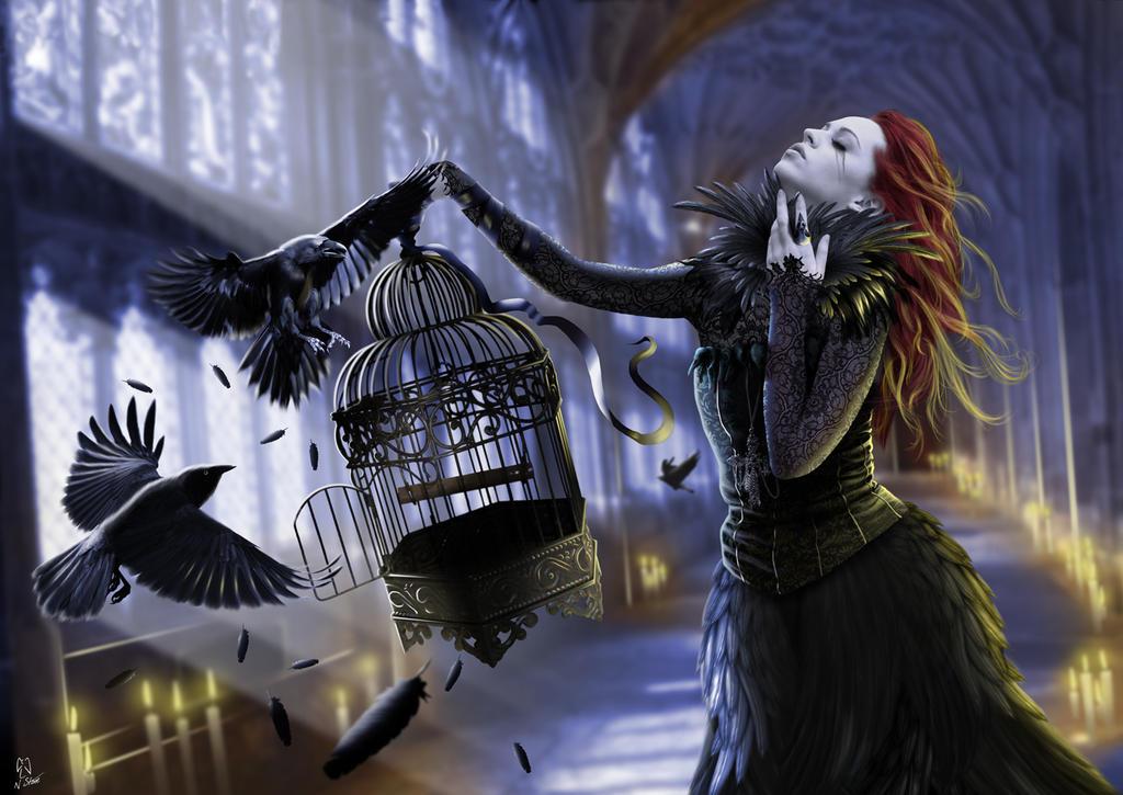 Cornix Reginam by angel1592