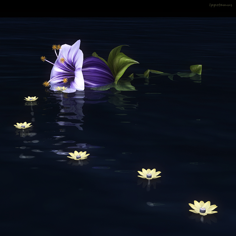 Flower's Tide by Ippotamus