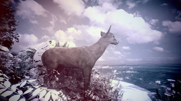 The Deer by Water