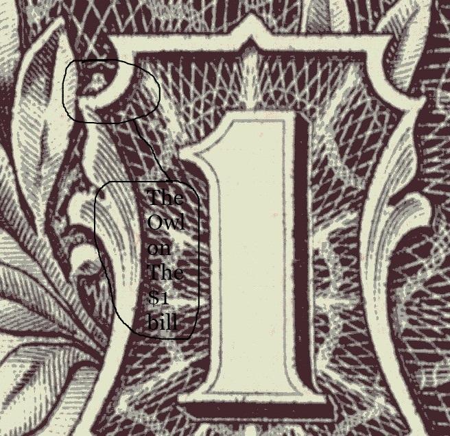 Owl on the 1 Dollar Bill by JimmieJohnson48fan on DeviantArt