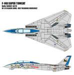 F-14D Super Tomcat - VF-213