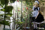 .:: A Maid Dream ::.