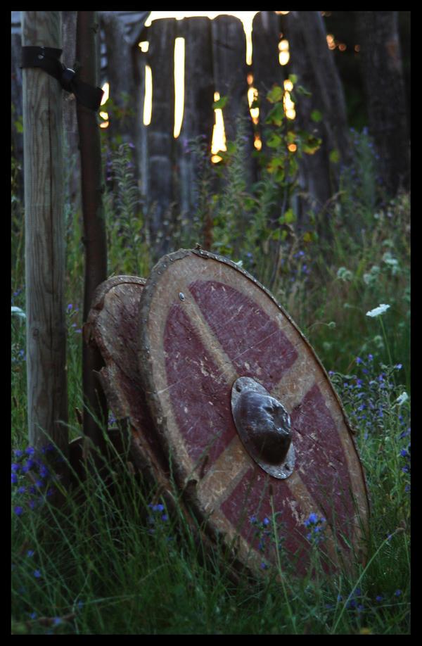halsinge shield by IdunaMariana