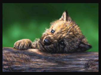 Wolf Pup by ChayaA