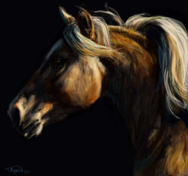 ,arabian horse,horse riding,quarter horse,paint horse,black horse,horse racing,horse feathers,cartoon horse,white horse,horse ride,sea horse,funny horse,shire horse,horse shoe,trojan horse,horse jumping,wild horse,crazy horse,mustang horse