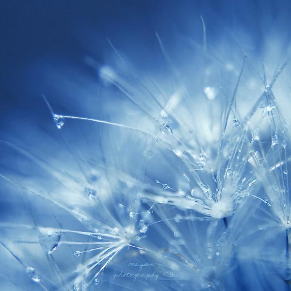 blue by Megson