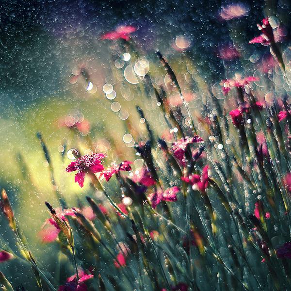 pure magic by Megson