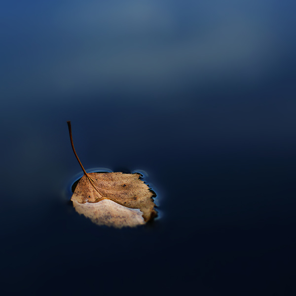 all alone by Megson
