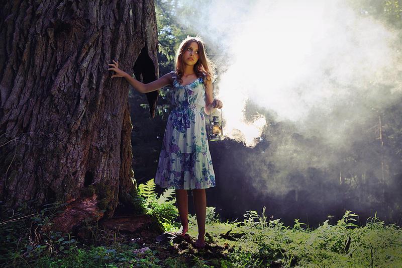 fairies by Megson