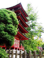Japanese Tea Garden: pagoda by QmagicalQpineappleQ