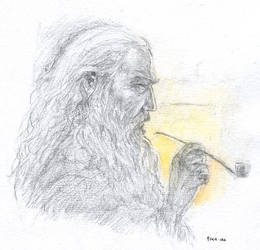 Gandalf by firelight