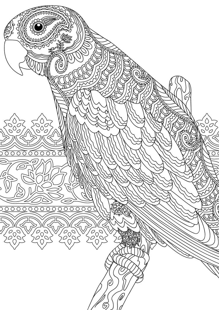 free coloring pages india designs | Indian Summer Parrot by handtoeye on DeviantArt