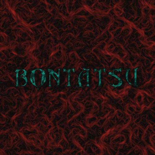 bontatsu's Profile Picture