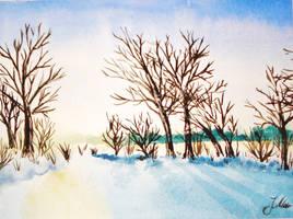 Pond in Winter by Marascha