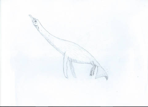 Plesioavis Aquaticus