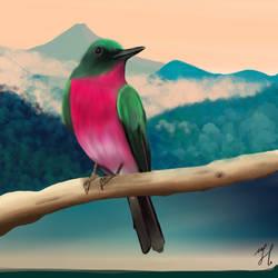 BirdInTheSky
