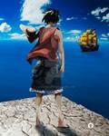 Luffy in new world