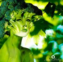 Woman Broccoli by LuhaBiha