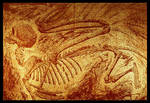 Sphinx Fossil