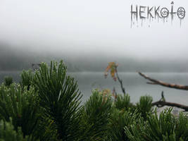 Fog and dew by Hekkoto