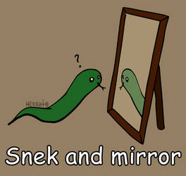 Day 73: Snek and mirror [365 days of snek Project] by Hekkoto