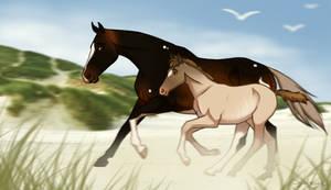 DIRPG | CLAIM ATTEMPT | Race Me!