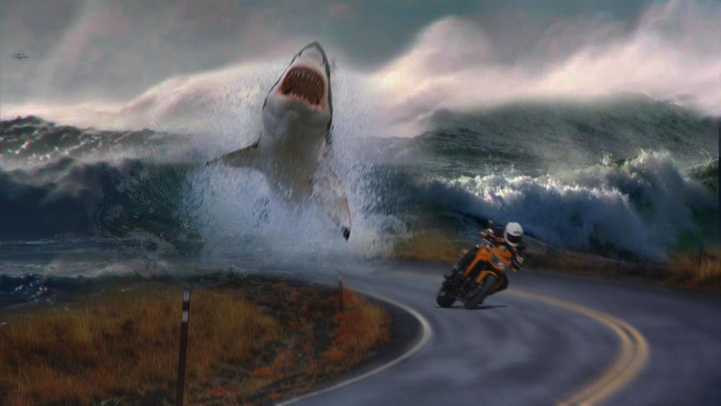 Wallpaper Shark Attack By Saladknight On Deviantart