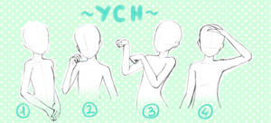 Halfbody YCH auction [OPEN]