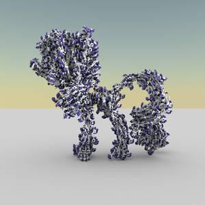 Pony DID Pony Pony