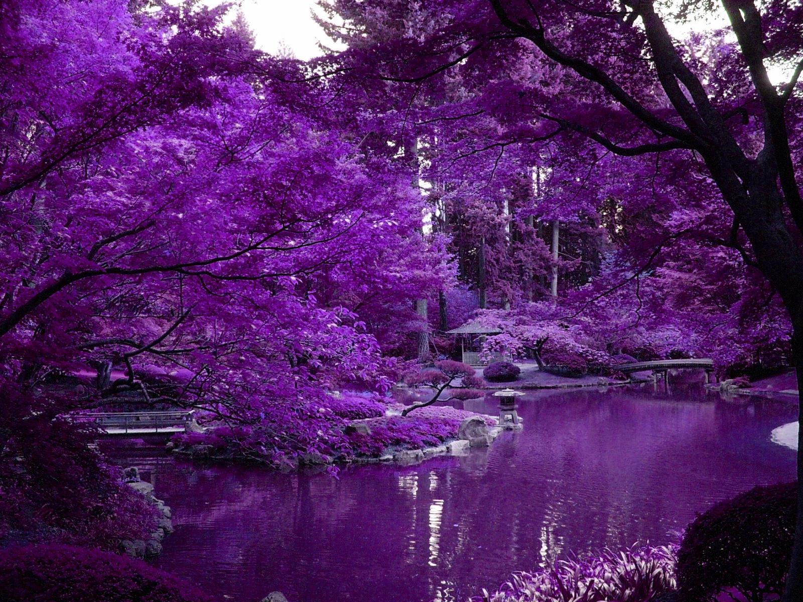 Japanese Garden By Escapedlunatic13 On Deviantart