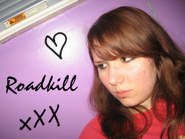 rabbitsareroadkill37's Profile Picture