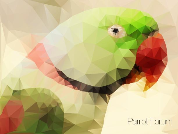 Parrot Low poly by diamonddew123