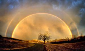 Golden Arc by tt83x