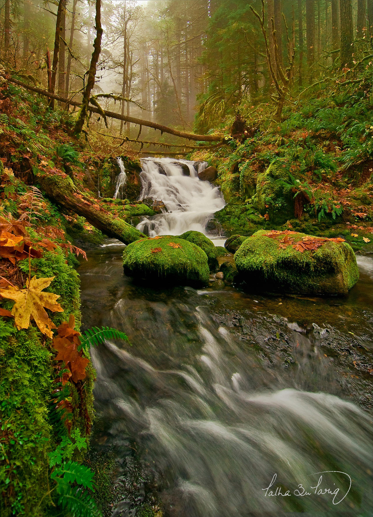 Columbia River Gorge II by tt83x